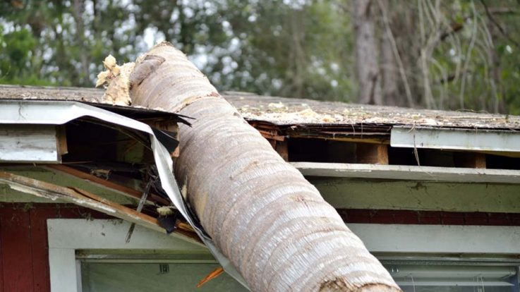 Don't Let Heavy Winds Result in Roof Wind Damage!
